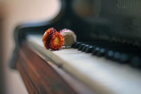 Musikterapi kan ge bättre hälsa. Att spela piano själv eller lyssna på piano-musik kan främja hälsan.